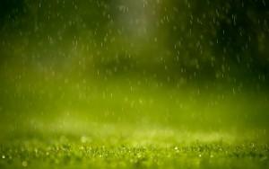 Pozni Dažd